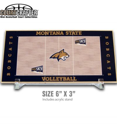 Courtcrafter Desktop mini basketball court collectibles